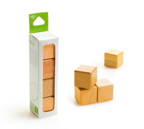 4 Piece Tegu Magnetic Wooden Block Cube Set, Orange