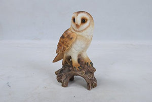 All Line Barn Owl On Stump, 7.25