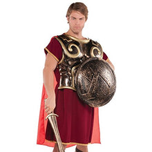 Load image into Gallery viewer, Gracious Gods And Goddess Spartan Shield Party Accessory, Bronze, Plastic , 18