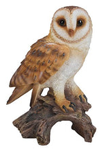 Load image into Gallery viewer, All Line Barn Owl On Stump, 7.25