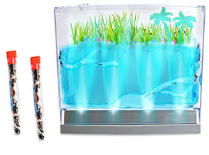 Live Lighted Ecosystem Ant Habitat Shipped With 50 Live Ants Now (2 Tubes Of Ants) - Lights Up
