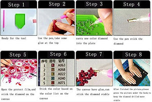 Tianmai Hot New Diy 5D Diamond Painting Kit Crystals Diamond Embroidery Rhinestone Painting Pasted Paint By Number Kits Stitch Craft Kit Home Decor Wall Sticker - Girl Bicycle Butterfly , 30X25Cm