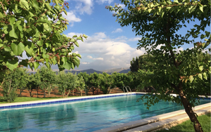 Outdoor swimming pool in the fruit orchard. Piscine en plein air, verger. Heaven in the Bekaa valley. La vallée de la Bekaa. Plaine de la Bekaa. Beqaa valley. Deep in the heart of historic Lebanon lies an enchanting heaven of peace and tranquility.