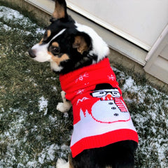 Cora the Corgi size L