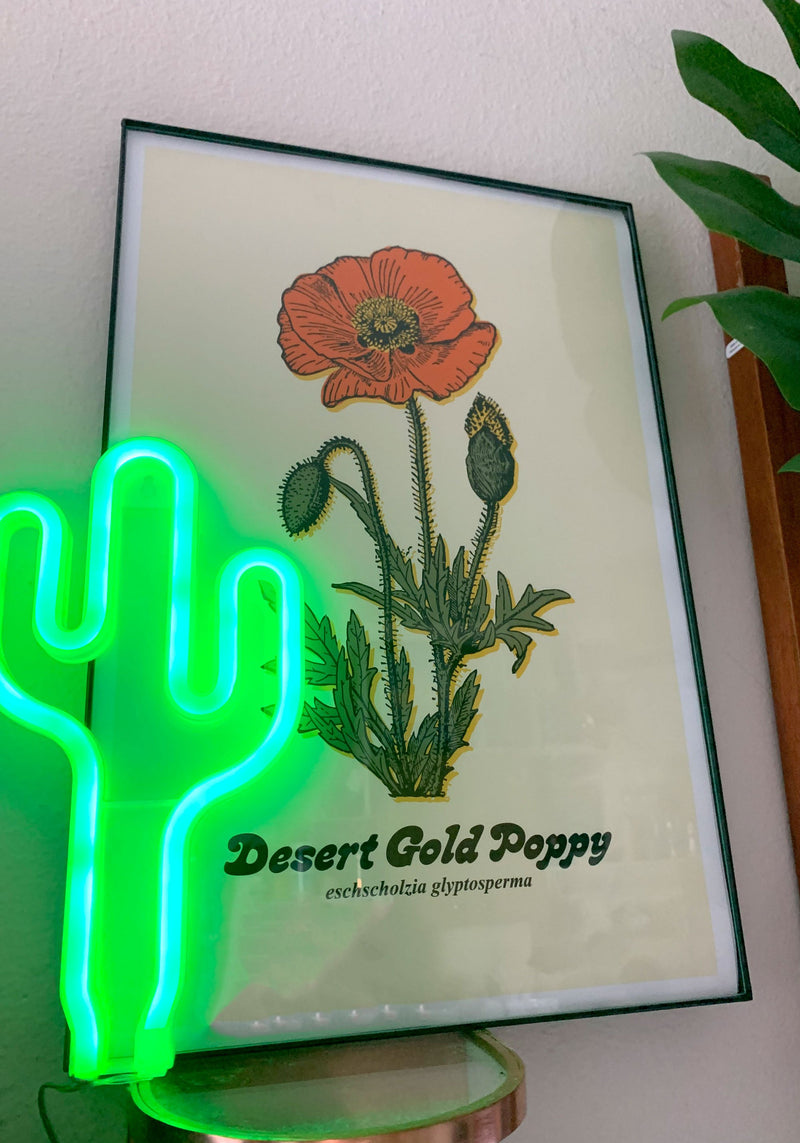 Desert Poppy Illustration