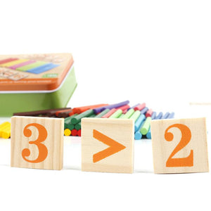 Montessori Mathematics Counting kit