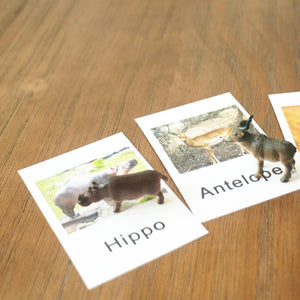 Montessori Animal Cards