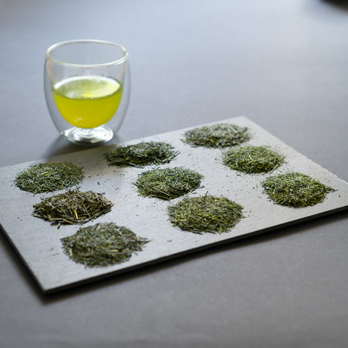 Sencha Sampler (9 pack)