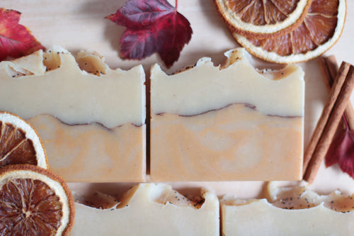 ORANGE CINNAMON & VANILLA, coconut milk soap