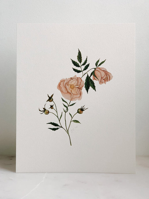 Watercolor Dog Rose Print