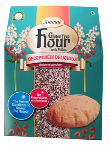Gluten Free Flour (with mIllets)