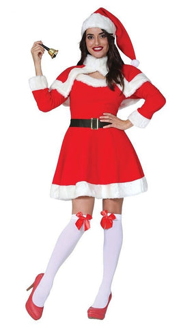 Luxury Mrs Santa Costume