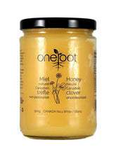 NATURAL RAW CLOVER HONEY - 500G