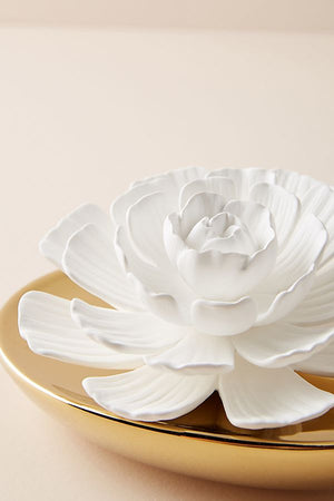 Dream Porcelain flower Diffuser- White Rose