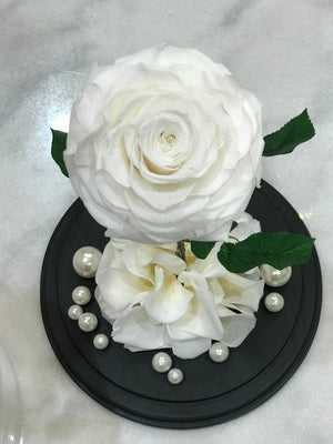 Large Dome with Single Rose