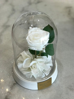 Mini Dome with Single Rose