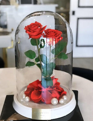 Medium Dome w/ Double Classic Size Roses - White Base
