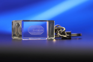 EMF Protection Keychain / Electro-Smog Neutralizing Portable / Traveling Device (by Somavedic)