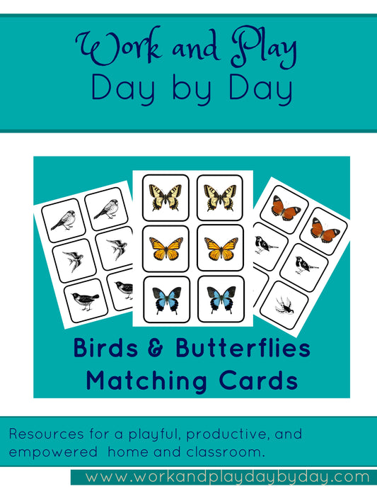 Birds & Butterflies Matching Game