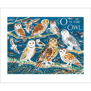 Emily Sutton O is for Owl from Art Angels