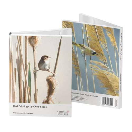Bird Paintings by Chris Bacon Notecards