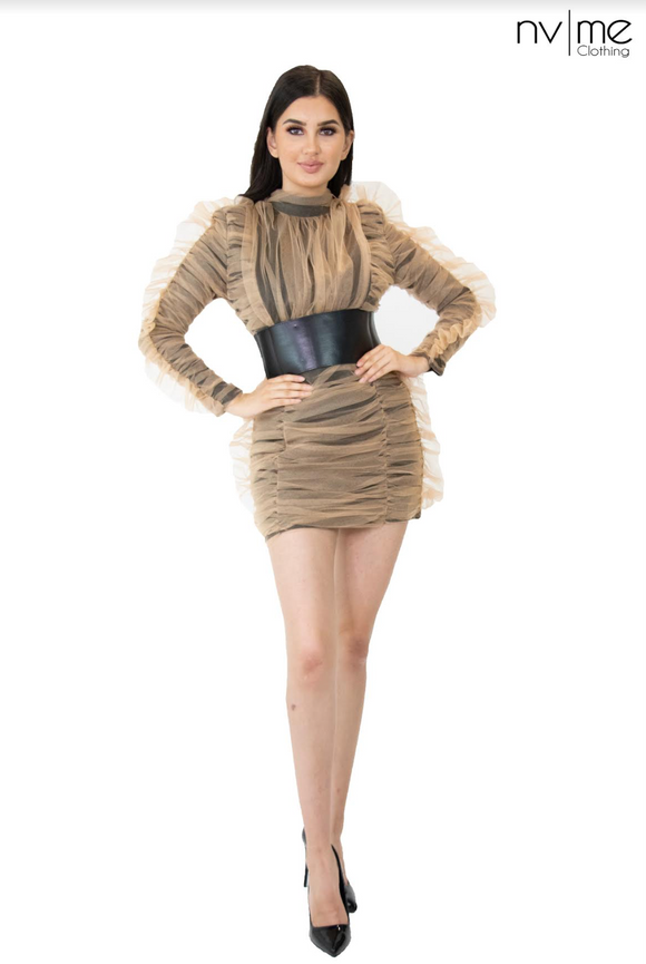 Lucrecia Mesh Belt Dress