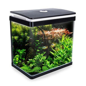 Dynamic Curved Glass Aquarium Low Noise Freshwater Saltwater Fish Tank with Low Energy LED Aquarium Light 30L