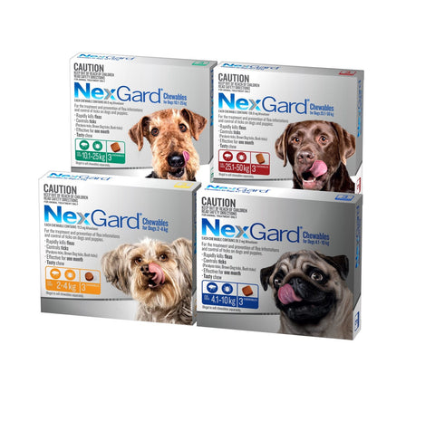 Image of Nexgard Protection Flea & Worming for Dogs - Chewable