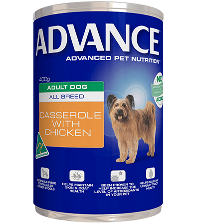 Advance Adult Wet Dog Food Casserole with Chicken 12 x 700gms Everyday Pets