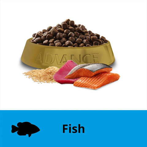 Image of Advance Adult Dog Toy Small Breed Terrier Dry Dog Food Ocean Fish 2.5kg Everyday Pets
