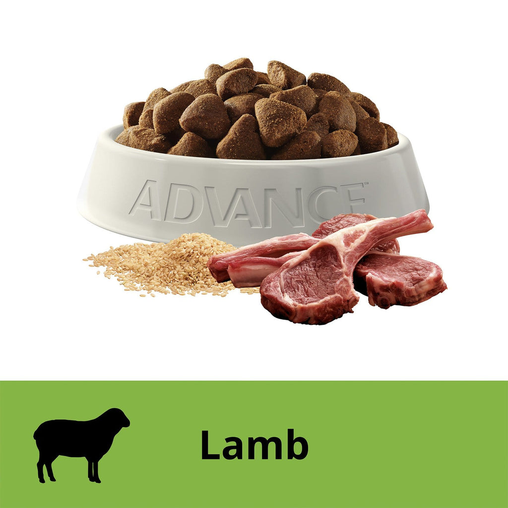 Advance Adult Dog Large Breed Lamb Flavor 15kg Everyday Pets
