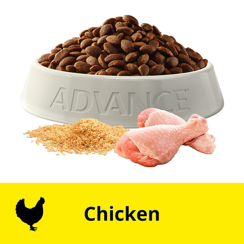 Image of Advance Puppy Plus Growth Large+ Breed Dry Dog Food Chicken 3kg Everyday Pets