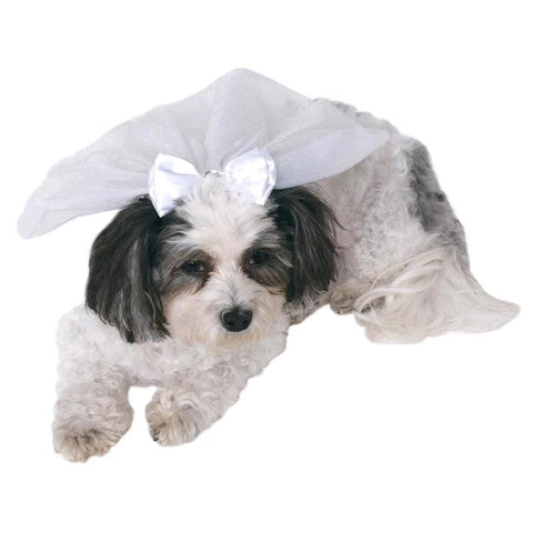 Image of Pet Wedding Veil