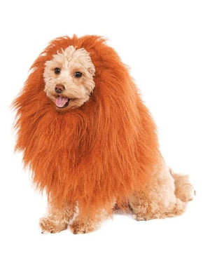 Lion Character Costume Faux fur Dog OutfitAfterpay ZipPay Australia Melbourne Sydney Adelaide Gold Coast