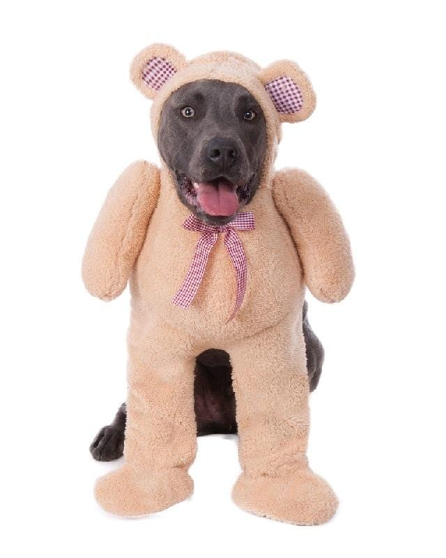 Teddy Bear Dog Outfit Costume With Attached Bow