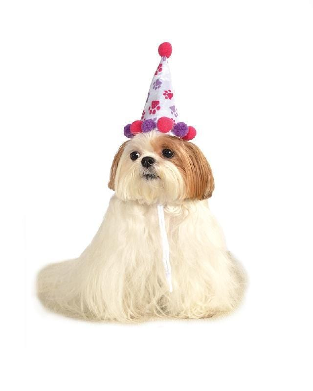 Paw Print Girl Pet Birthday Hat Accessory