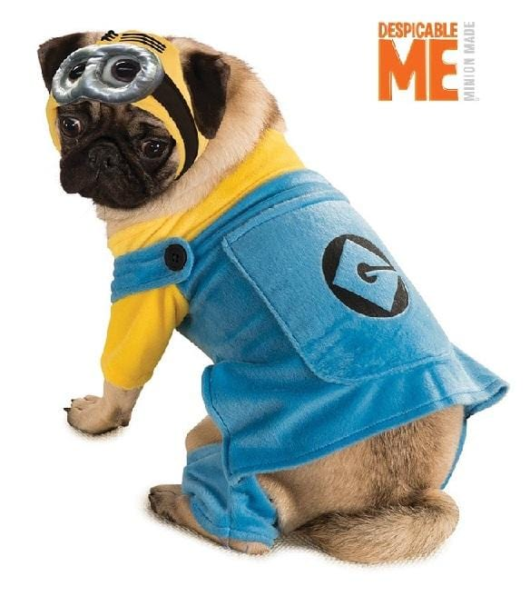 Minion Pet Costume