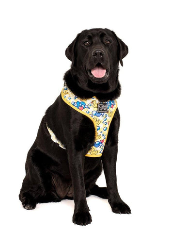 Image of Big-Little-Dogs-Adjustable-Dog-Harness-Rubber-Ducky-Bella