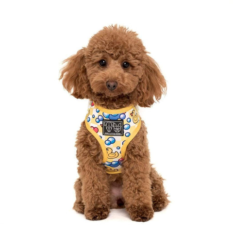 Image of Big-Little-Dogs-Adjustable-Dog-Harness-Rubber-Ducky-Coco