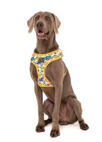 Image of Big-Little-Dogs-AAdjustable-Dog-Harness-Rubber-Ducky-Hank