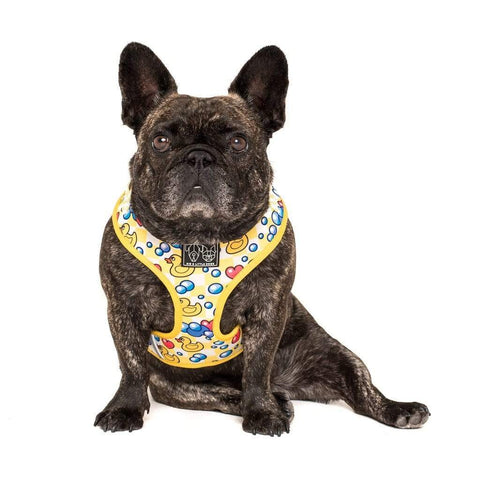 Image of Big-Little-Dogs-Adjustable-Dog-Harness-Rubber-Ducky-Toby