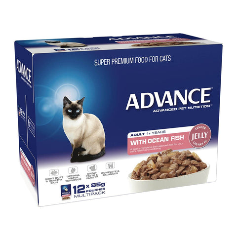 Image of Advance Adult Cat Wet Cat Food Pouch Ocean Fish in Jelly 12 x 85gm