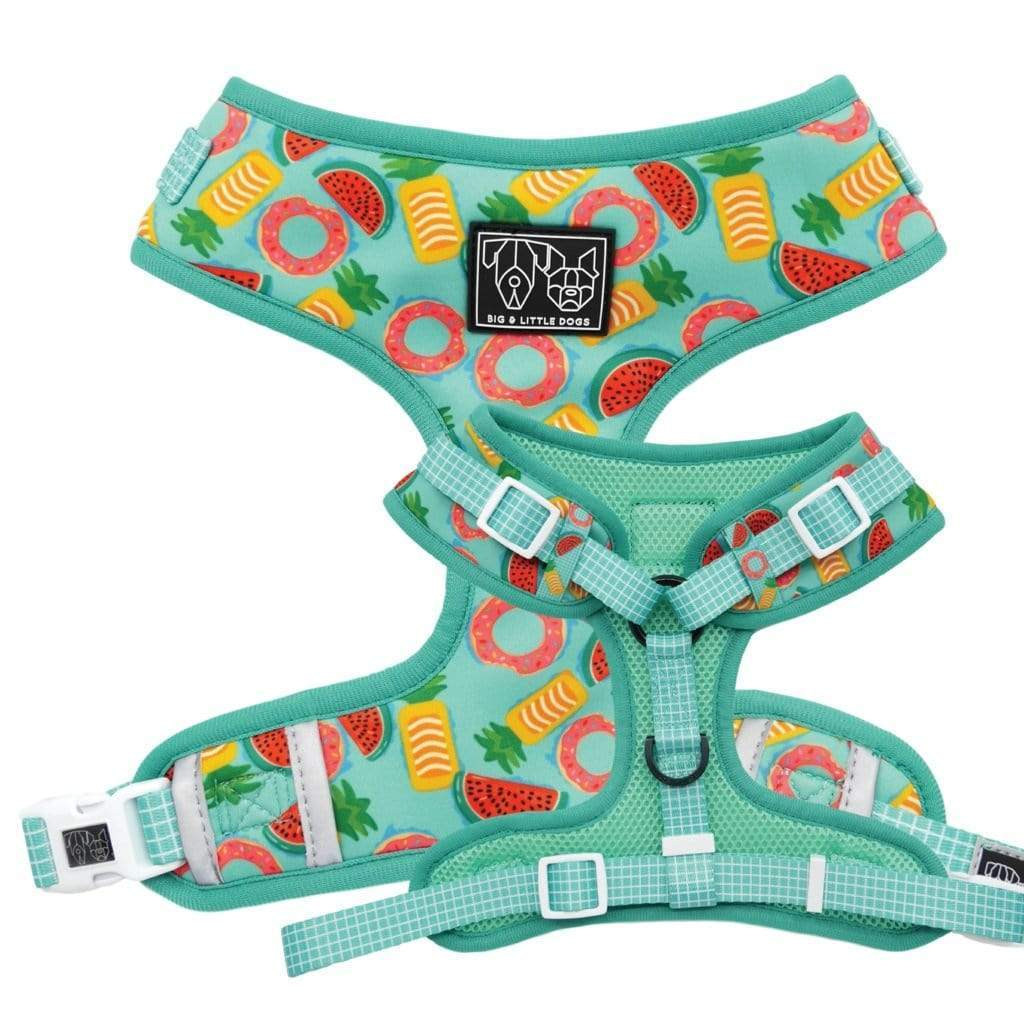 Big-and-Little-Dogs-Adjustable-Dog-Harness-A-Splashing-Good-Time-01