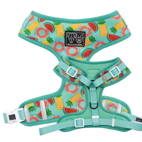 Image of Big-and-Little-Dogs-Adjustable-Dog-Harness-A-Splashing-Good-Time-01
