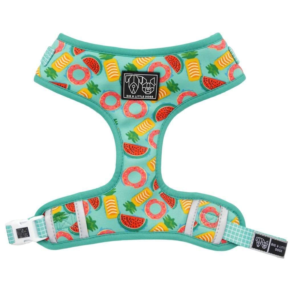 Big-and-Little-Dogs-Adjustable-Dog-Harness-A-Splashing-Good-Time-Front