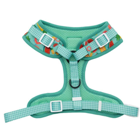 Image of Big-and-Little-Dogs-Adjustable-Dog-Harness-A-Splashing-Good-Time-Reverse