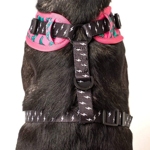 Image of Big-and-Little-Dogs-Adjustable-Dog-Harness-Princessasaurus-Back-2