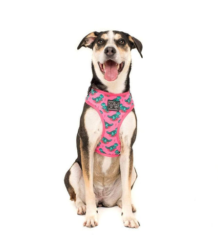 Image of Big-and-Little-Dogs-Adjustable-Dog-Harness-Princessasaurus-Luna