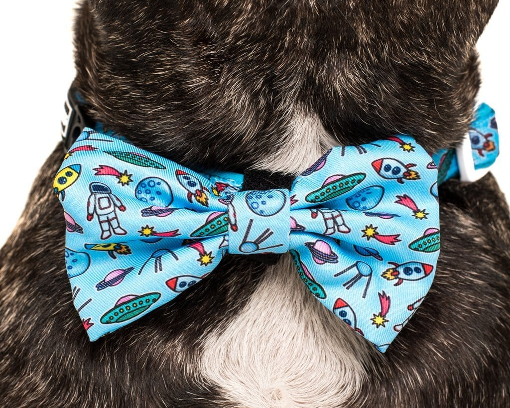 Big-and-Little-Dogs-Collar-and-Bow-Tie-Out-Of-This-World-Close-Up