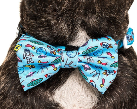Image of Big-and-Little-Dogs-Collar-and-Bow-Tie-Out-Of-This-World-Close-Up
